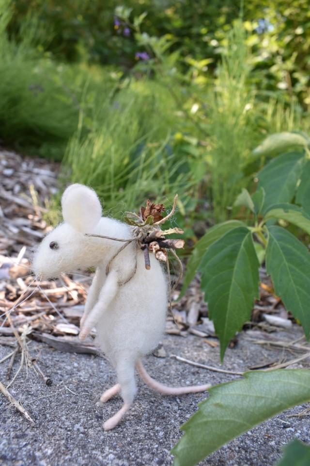 mouse outside
